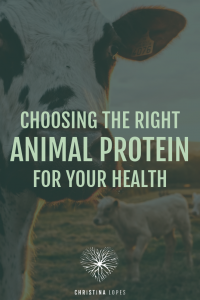 The Right Animal Protein